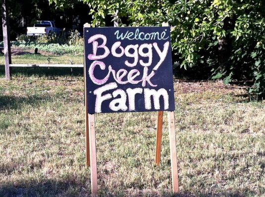 Boggy Creek Farm BBQ